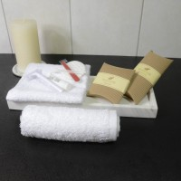 Terry face towel 30*30 cm white