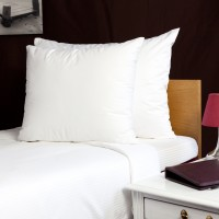 Pillow protector with zipper 50*60 cm, waterpr
