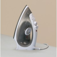 Small steam iron, white
